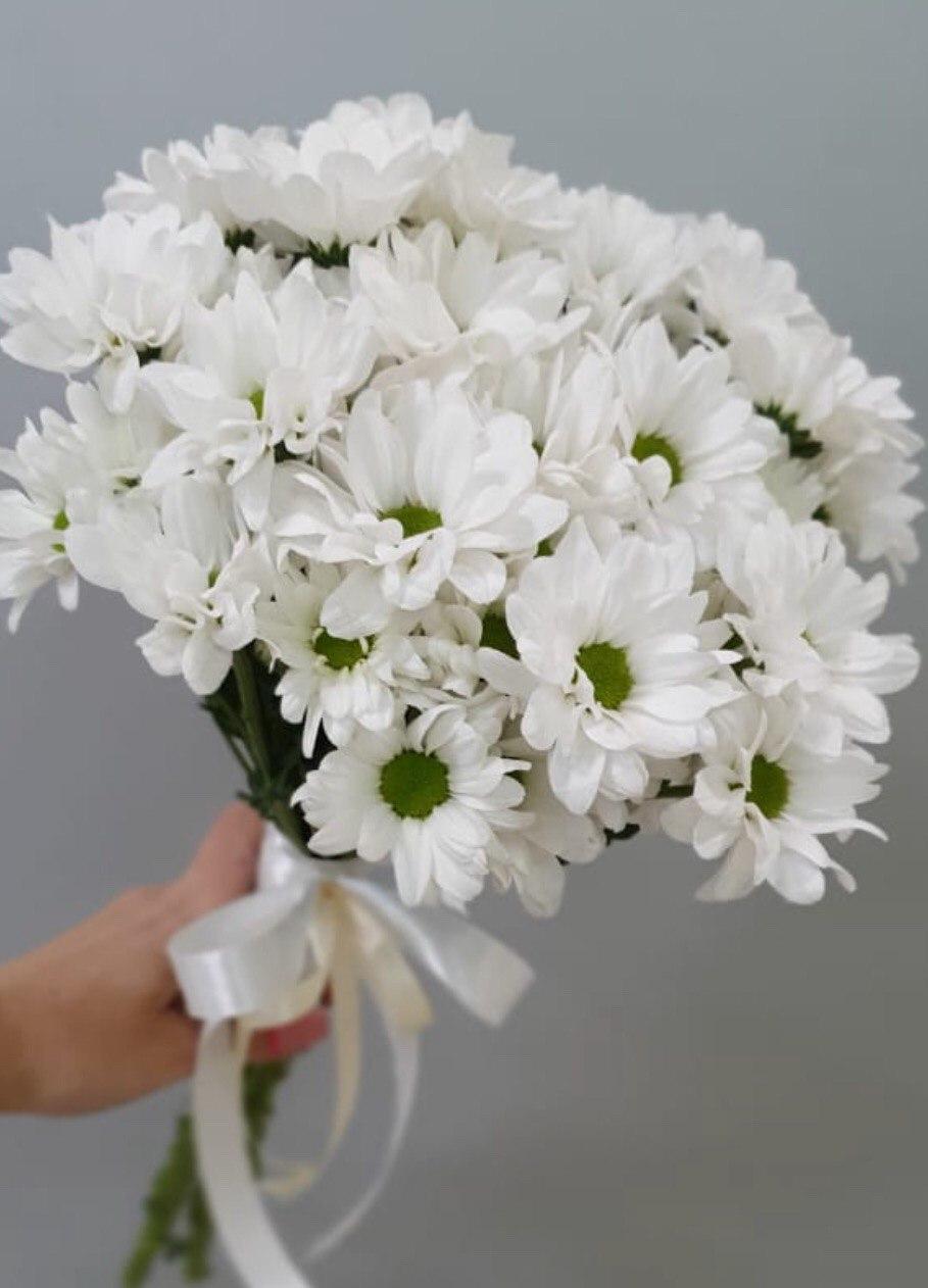 Букет хризантем (Б-126)
