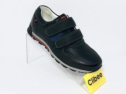 Clibee P312
