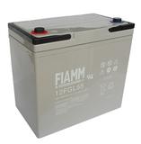 Аккумулятор FIAMM 12FGL55 ( 12V 55Ah / 12В 55Ач ) - фотография