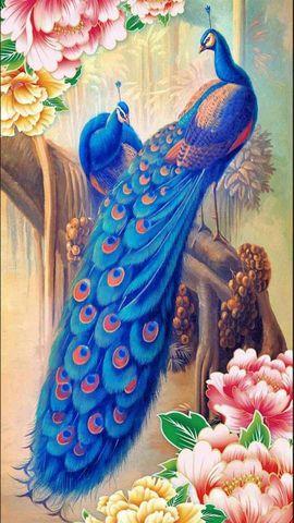 Алмазная Мозаика 5D 40x50 Пара павлинов в цветах