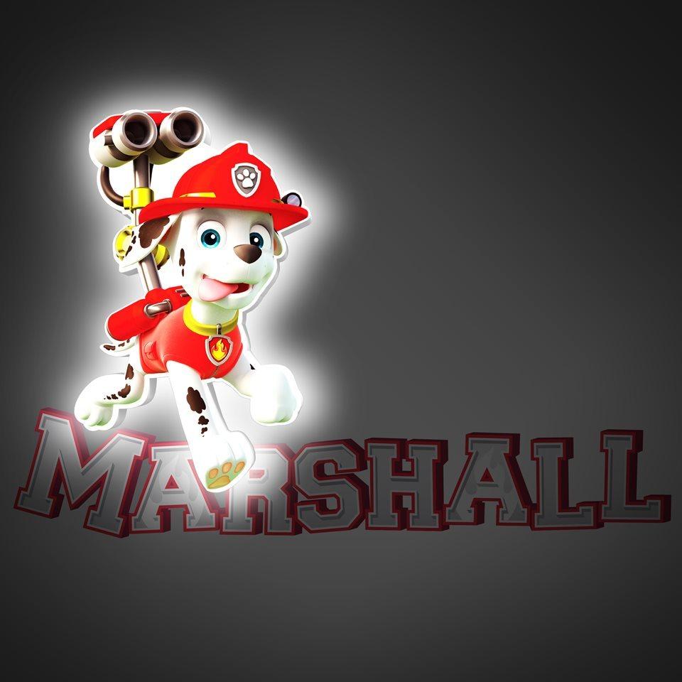 Маршал 3D-светильник мини Щенки