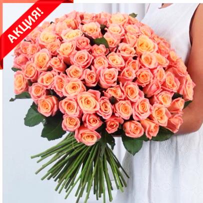 Букет 101 персиковая роза Мисс Пигги акция
