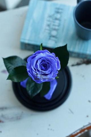 Роза в колбе Mini ОПТОМ Выс*Диам*Бутон (22*12.5*6см), Цвет сиреневая