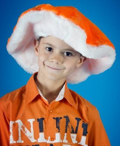 Карнавальная шапочка Гриб 1
