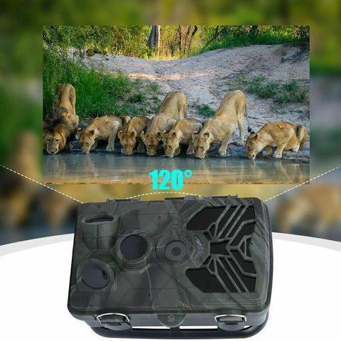 Фотоловушка Suntek HC-810 Wi-Fi, trail camera