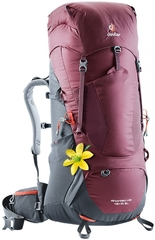 Deuter Aircontact Lite 45+10 Sl Maron-Graphite - рюкзак туристический