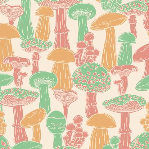 Цветные грибы на бежевом фоне
