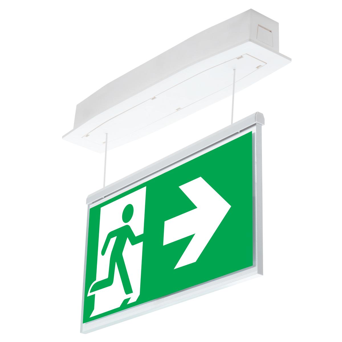 Эвакуационные световые указатели Suprema LED D-std PT-S IP54 Intelight – общий вид