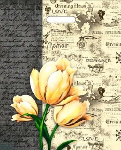 Пакет ПЭ с вырубной ручкой 38х47+6 (60) И ламинация (Мемуары)
