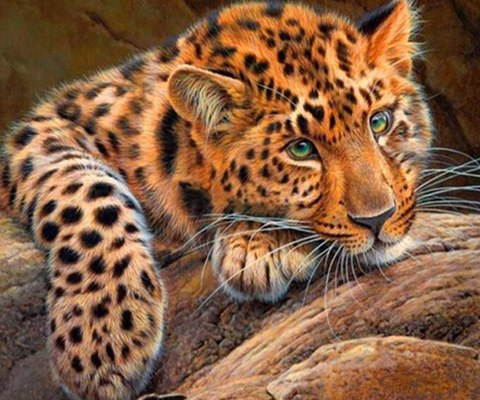 Алмазная Мозаика 40x50 Леопард на камне (арт. MTCL220 )