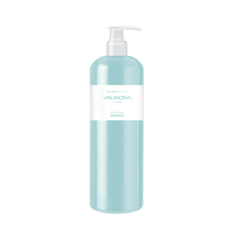 EVAS VALMONA Recharge Solution Blue Clinic Shampoo