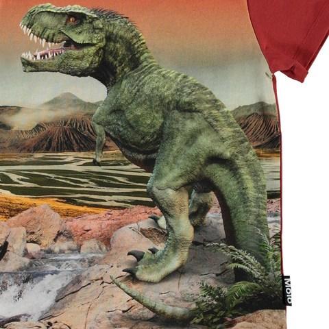 Molo Road Dinosaurs футболка для мальчика
