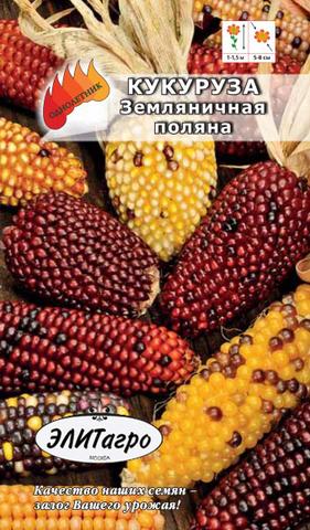 Семена Кукуруза Земляничная поляна, декоративная