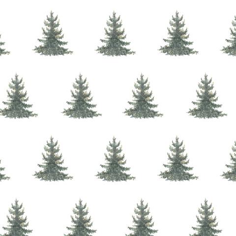 Хвойный лес 3