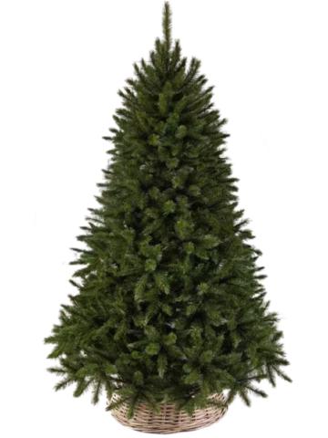 Triumph tree ель Лесная красавица 2,60 м зеленая