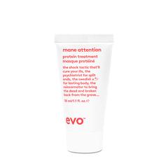 EVO Укрепляющий протеиновый уход [рецепт для гривы] Mane Attention Protein Treatment