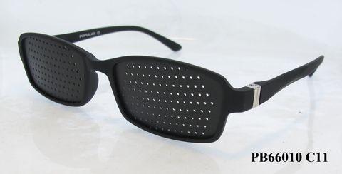 PB66010 C11