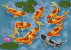 PINN Рыбки счастья