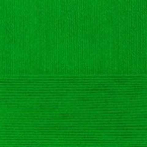 Купить Пряжа Пехорка Детская новинка Код цвета 434-Зеленый | Интернет-магазин пряжи «Пряха»