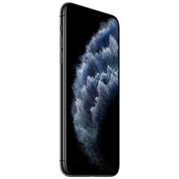 Apple iPhone 11 Pro Max 64GB Space Gray (Ростест)