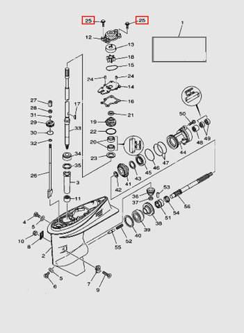 Болт крепления корпуса помпы для лодочного мотора T40 Sea-PRO (23-25)
