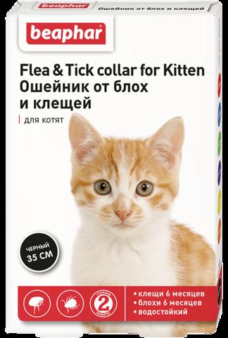 Беафар ошейник для котят