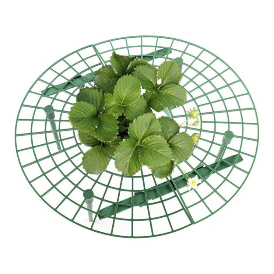 Для дачи, сада, огорода Опора для клубники, комплект 5 шт. opora-dlya-klubniki.jpg