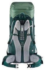 Рюкзак Deuter Aircontact Lite 60+10 SL aloe-forest (2021) - 2