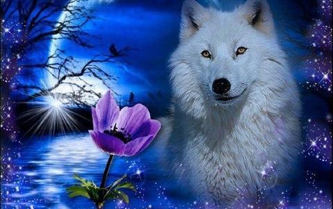 Алмазная Мозаика 20x30 Волчица и цветок