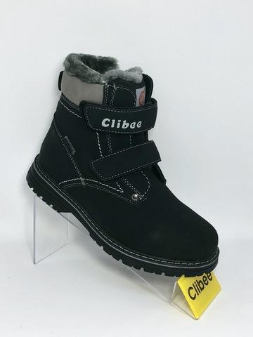 Clibee H176