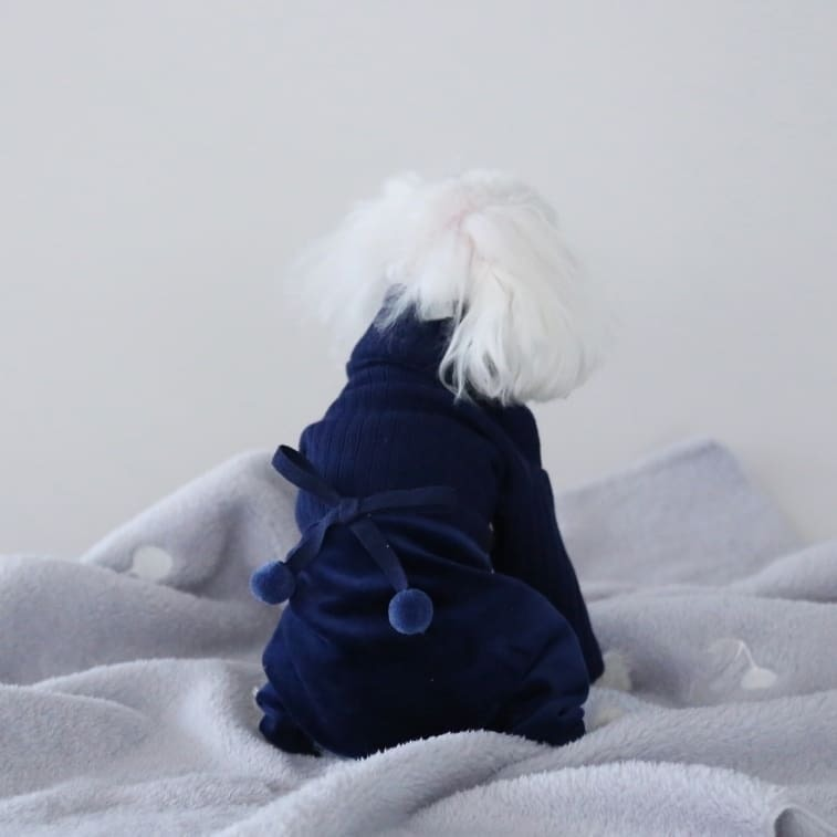 BH - Костюмы для собак