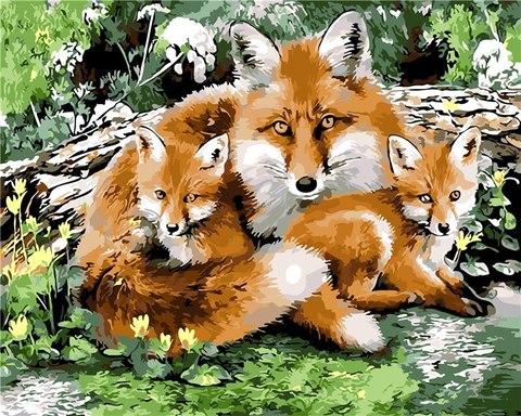 Картина раскраска по номерам 40x50 Лиса с лисятами