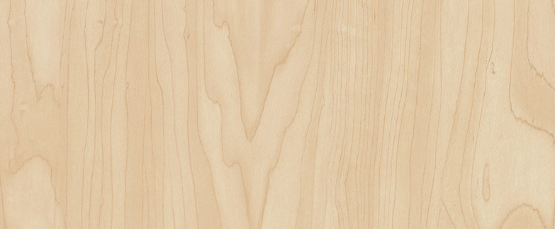 7911 MANITOBA MAPLE