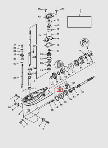 Гайка шестерни ведущей для лодочного мотора T40 Sea-PRO (23-37)