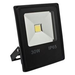 Светодиодный прожектор Feron  LL-838 (IP65, 30W, 80Lm)