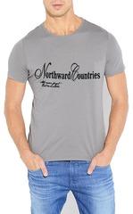 461493-36 футболка мужская, серая