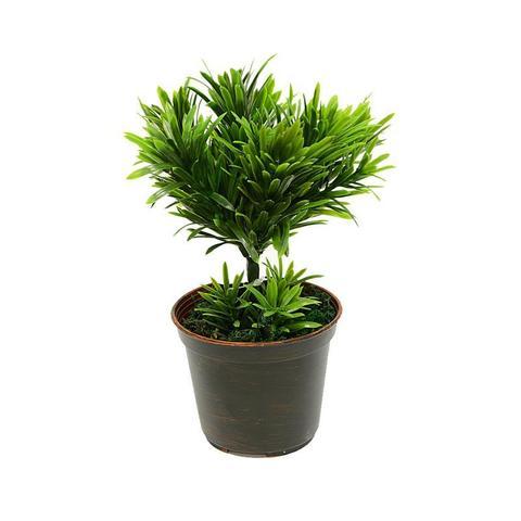 Растение иск.Дерево мини в кашпо 22cм