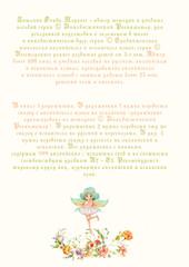 Сравнительная типология английского и испанского языка. Адаптированная сказкаСравнительная типология английского и испанского языка. Адаптированная сказка для перевода и пересказа. Книга 2 для перевода и пересказа. Книга 2
