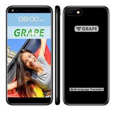 Голосовой переводчик GRAPE GTE-5.5 v.8 Pro