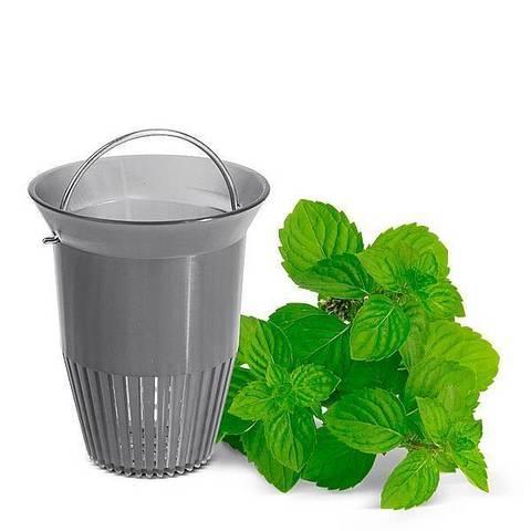 Термос-чайник заварочный Emsa Ellipse (1 литр), белый