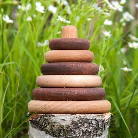 Пирамидка круглая, дуб-клен