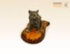 фигурка Котёнок сидит на янтаре