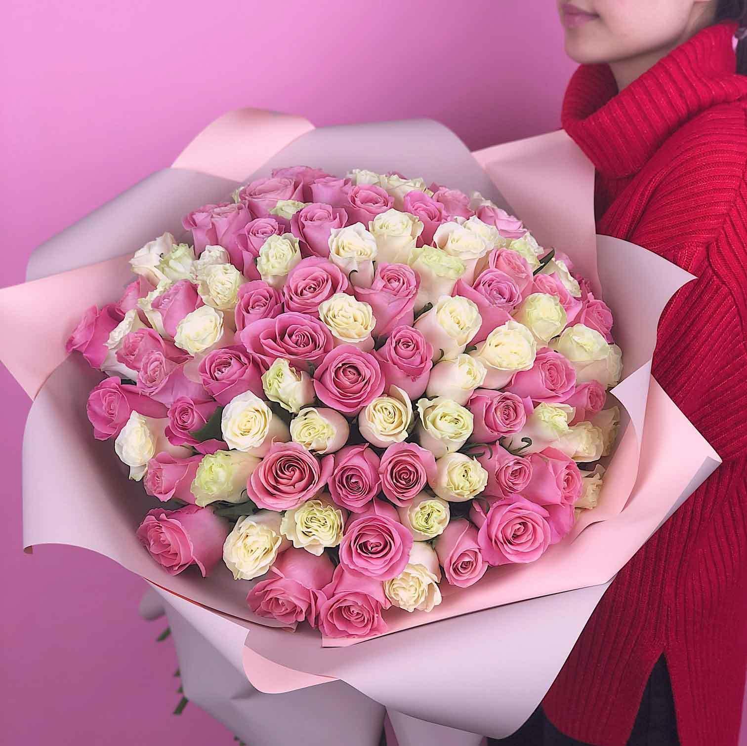 51 бело розовая роза