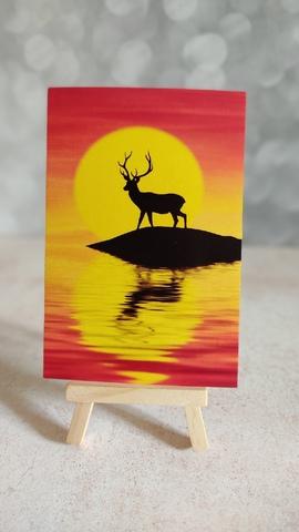 Олень на фоне солнца