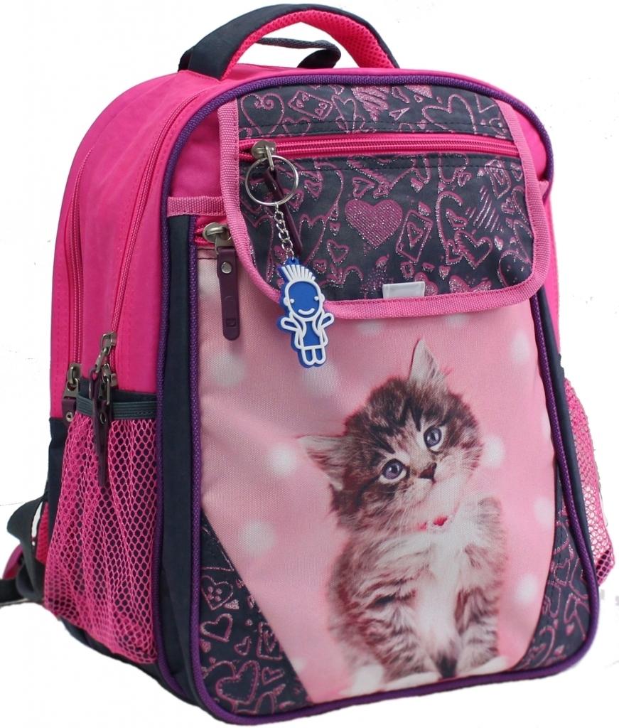 Школьные рюкзаки Рюкзак школьный Bagland Отличник 20 л. Серый (кот 65) (0058070) d6de3681d8f3827433a7f8c54bbd5a81.JPG