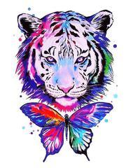 Картина раскраска по номерам 40x50 Разноцветный тигр и бабочка