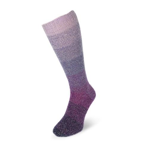 Flotte Socke Regenbogen 1393 пряжа для носков
