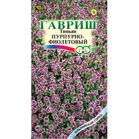 Тимьян ползучий Пурпурно - фиолетовый