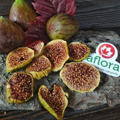 Чипсы фруктовые Инжир / 50 гр