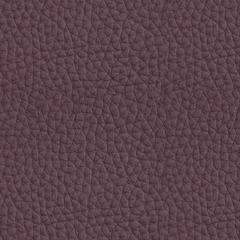 Искусственная кожа Hermes (Гермес) 881 Antler